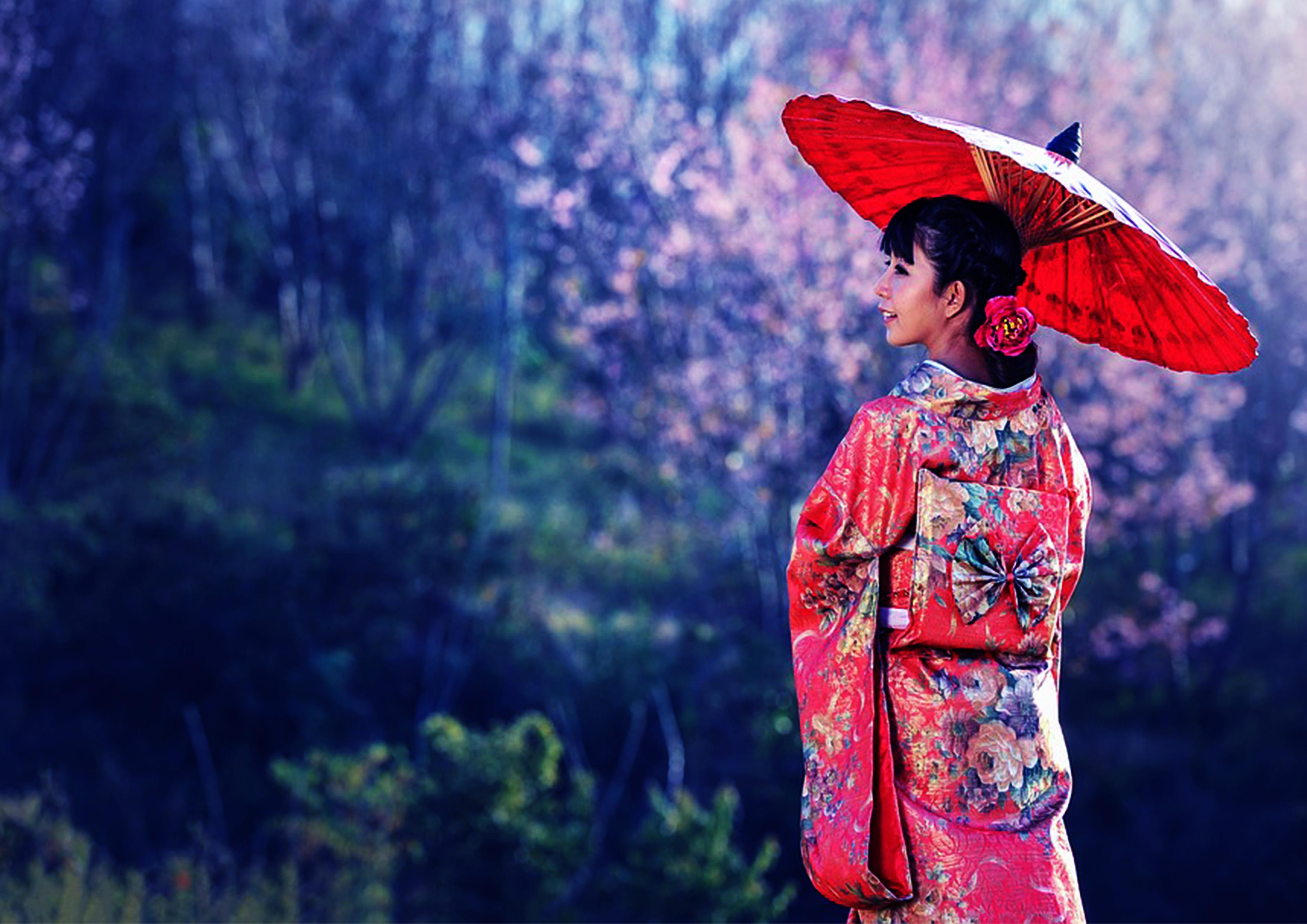 images/geisha_hintergrund_1.jpg